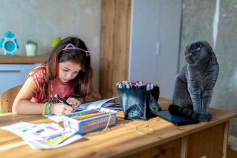 UNICEF Polska - historie