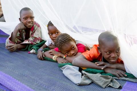 UNICEF Polska - Zatrzymaj koszmar malarii