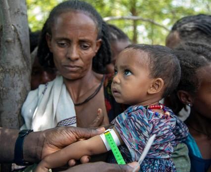 W północnej Etiopii liczba niedożywionych dzieci wzrosła dziesięciokrotnie, alarmuje UNICEF